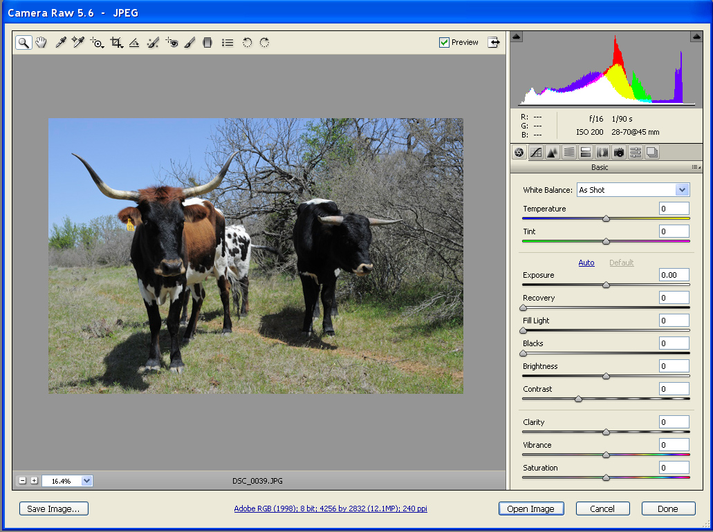 Adobe Camera Raw - Not Just for Raw Files - Lonestardigital.com