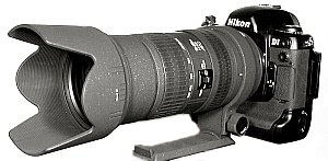 D1 with Sigma 50-500mm Zoom Lens @ 50mm